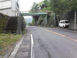 140506つばきライン004.jpg