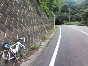 130803丹沢_038.jpg