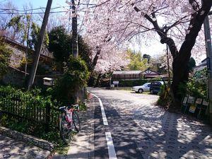 150402鎌倉012.jpg