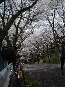 12041saihoku_049.jpg
