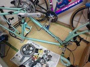 12041saihoku_069.jpg