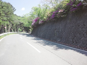 120519ashigara_003.jpg