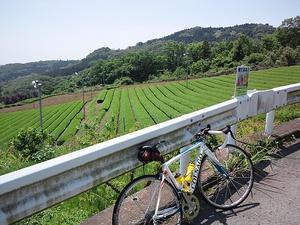120519ashigara_009.jpg