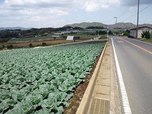 110429miura_003.jpg