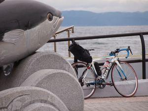 160924下北自転車118.jpg