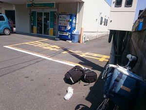 170421宮崎鹿児島自転車230.jpg