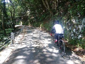 180420四国豊後自転車126.jpg