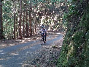 180420四国豊後自転車137.jpg