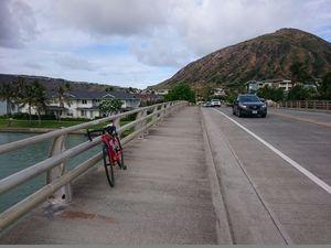 180701ハワイオワフ自転車030.jpg