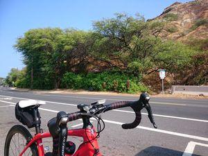 180701ハワイオワフ自転車063.jpg
