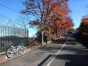 181124北埼城峯006.jpg
