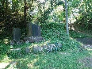190525巌道峠裏和田ツーリング006.jpg