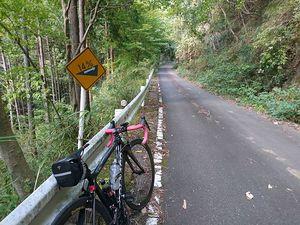 191109丹沢自転車001.jpg