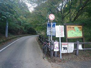 191109丹沢自転車004.jpg