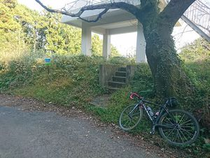 191109丹沢自転車005.jpg