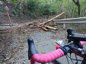 191109丹沢自転車015.jpg