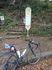 191114ヤビツ自転車019.jpg