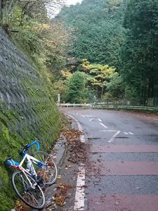 191124ヤビツ自転車007.jpg