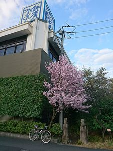 200312箱根ツーリング024.jpg