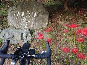 201002午後ヤビツ013.jpg