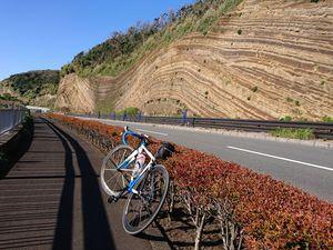 201024伊豆大島サイクリング045.jpg