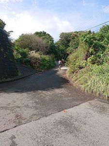 201103三宅島サイクリング052.jpg