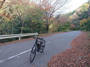 201128伊豆e-bike006.jpg