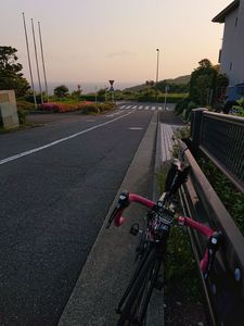 210509三浦04.jpg