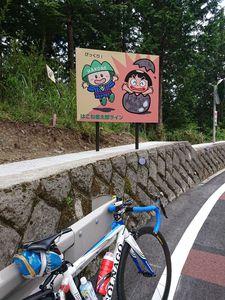 210613金太郎ライン007.jpg