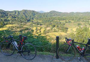 210920妻有自転車018.jpg