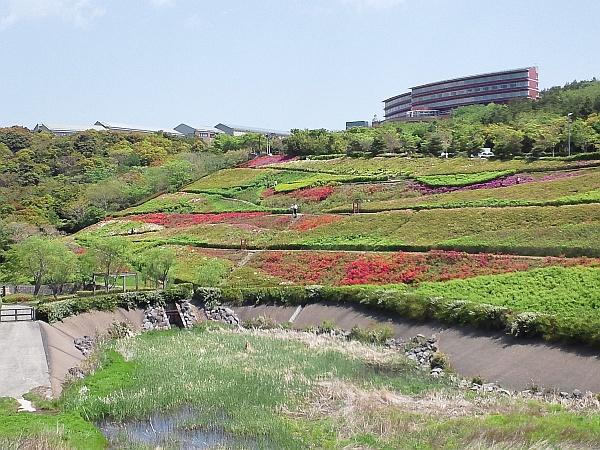 http://ayu2.com/Bicycle/bicphoto/110429miura_002.jpg