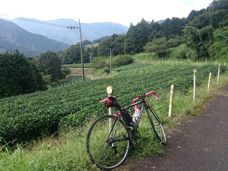 http://ayu2.com/Bicycle/bicphoto/160903%E3%83%A4%E3%83%93%E3%83%84011.jpg