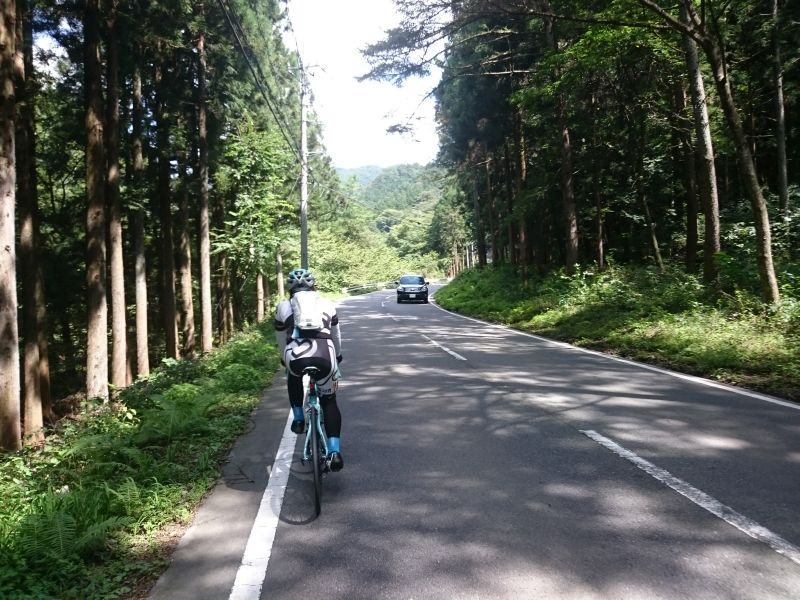 http://ayu2.com/Bicycle/bicphoto/160910005.jpg