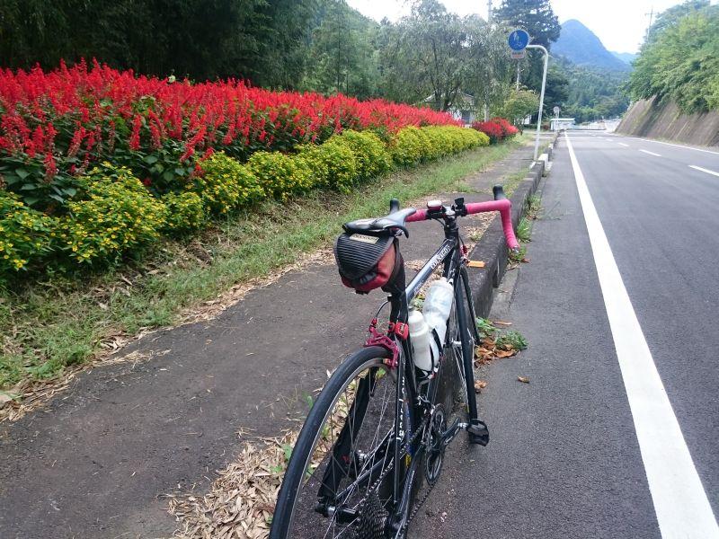 http://ayu2.com/Bicycle/bicphoto/160910009.jpg