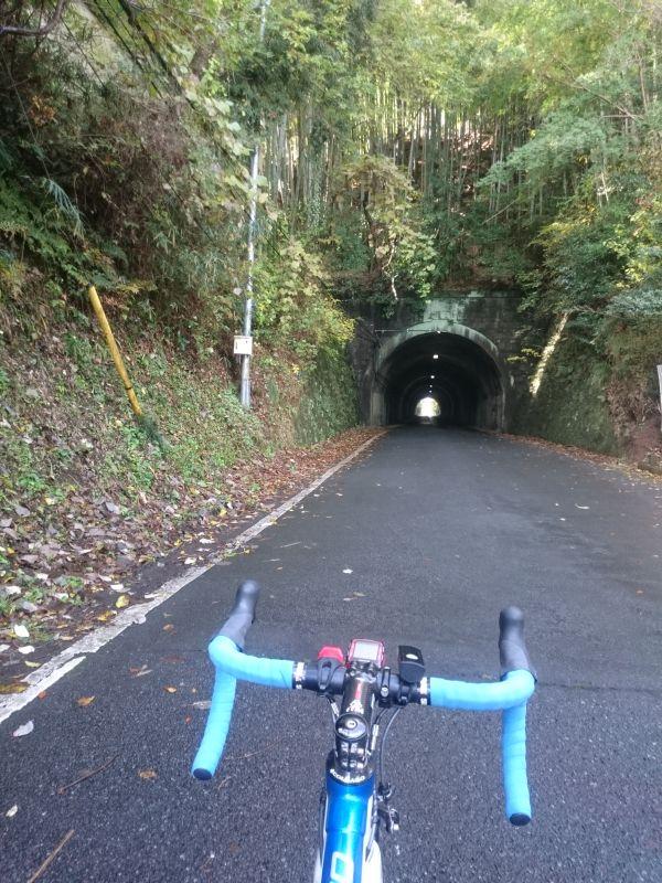 http://ayu2.com/Bicycle/bicphoto/161120%E3%83%A4%E3%83%93%E3%83%84004.jpg
