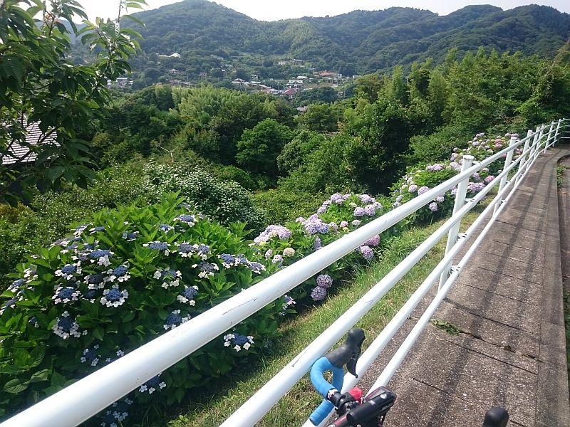 http://ayu2.com/Bicycle/bicphoto/17062902.jpg