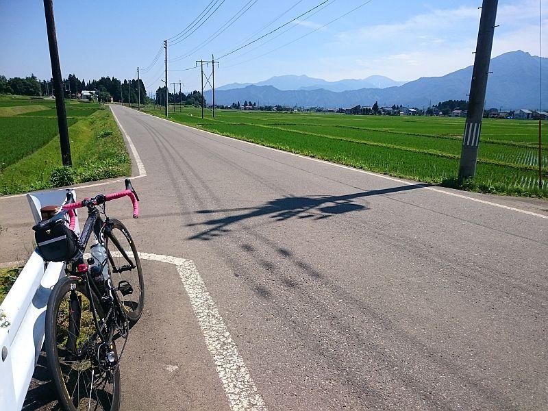 http://ayu2.com/Bicycle/bicphoto/18062401.jpg