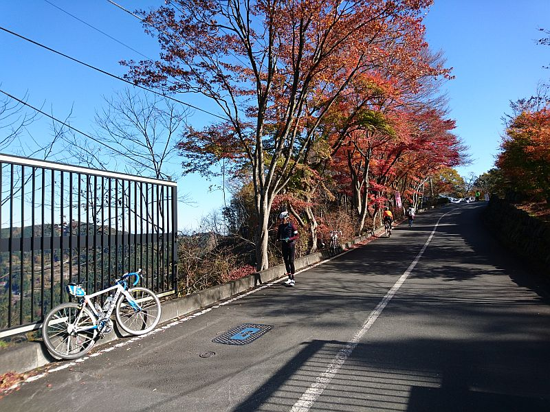 http://ayu2.com/Bicycle/bicphoto/181124%E5%8C%97%E5%9F%BC%E5%9F%8E%E5%B3%AF006.jpg