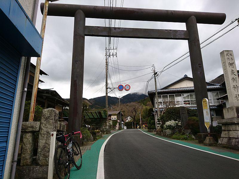http://ayu2.com/Bicycle/bicphoto/190322%E3%83%A4%E3%83%93%E3%83%84002.jpg