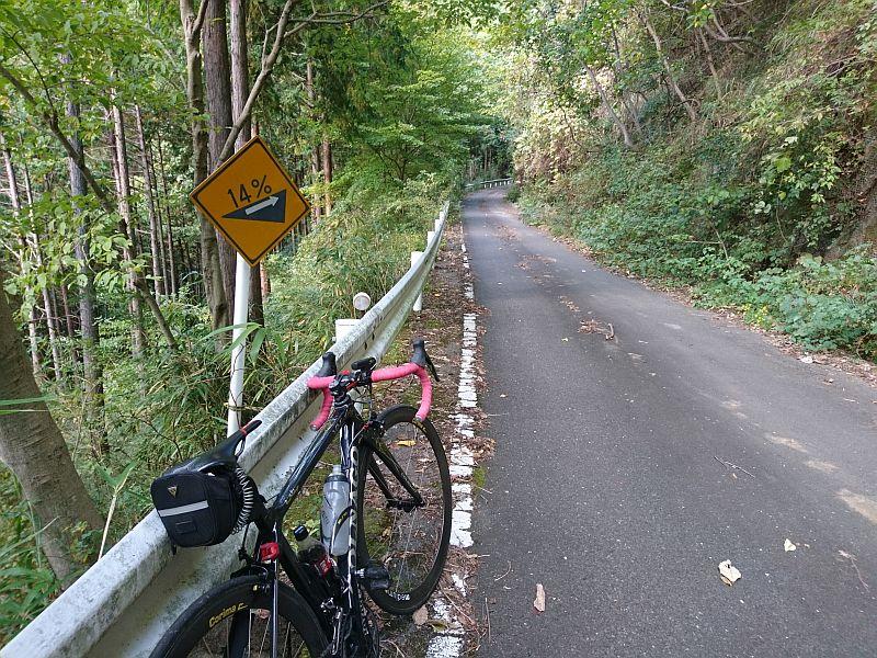 http://ayu2.com/Bicycle/bicphoto/191109%E4%B8%B9%E6%B2%A2%E8%87%AA%E8%BB%A2%E8%BB%8A001.jpg