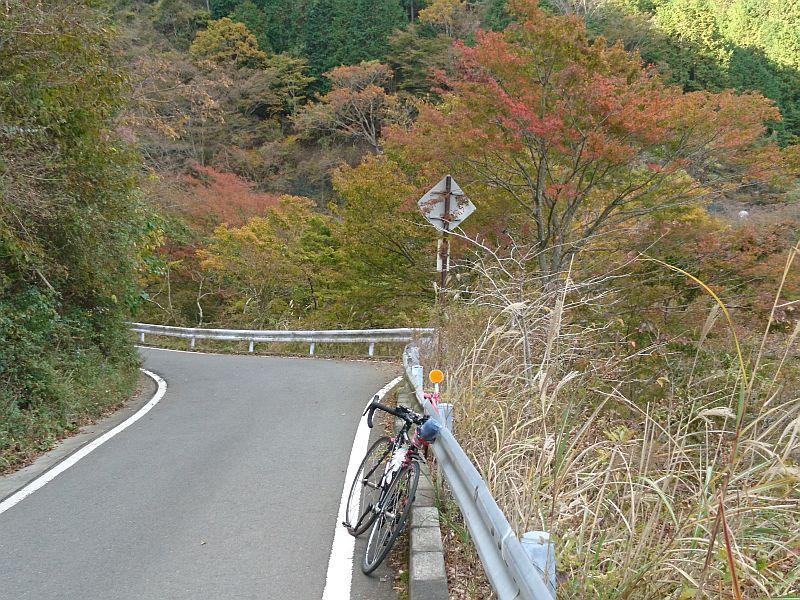 http://ayu2.com/Bicycle/bicphoto/191114%E3%83%A4%E3%83%93%E3%83%84%E8%87%AA%E8%BB%A2%E8%BB%8A011.jpg