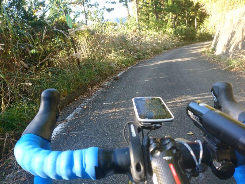 http://ayu2.com/Bicycle/bicphoto/191116%E3%83%A4%E3%83%93%E3%83%84%E8%87%AA%E8%BB%A2%E8%BB%8A003.jpg