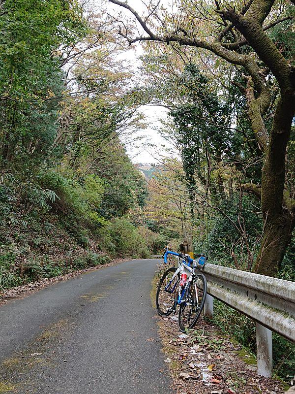 http://ayu2.com/Bicycle/bicphoto/201123%E3%83%A4%E3%83%93%E3%83%84003.jpg