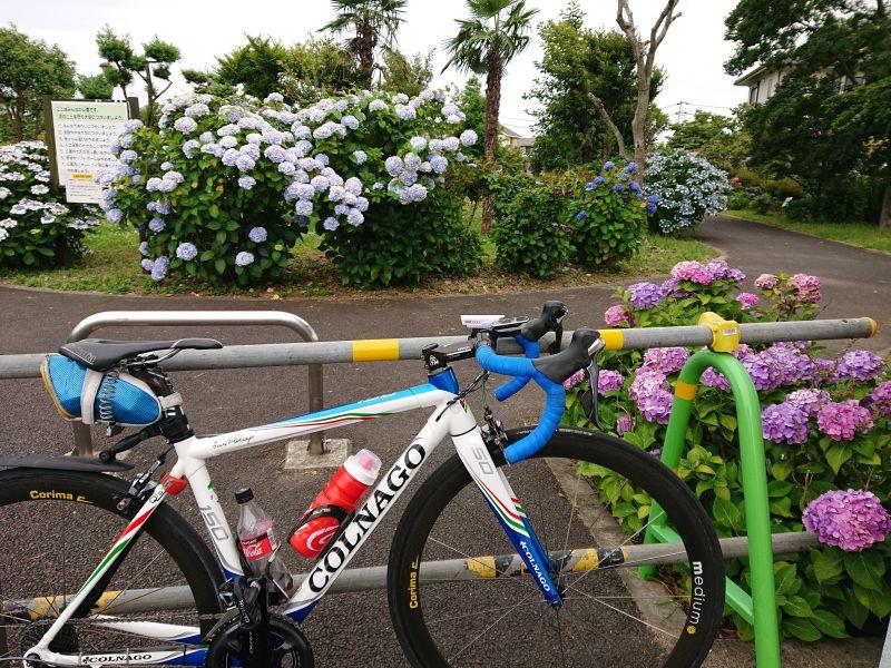 http://ayu2.com/Bicycle/bicphoto/210613%E9%87%91%E5%A4%AA%E9%83%8E%E3%83%A9%E3%82%A4%E3%83%B3002.jpg