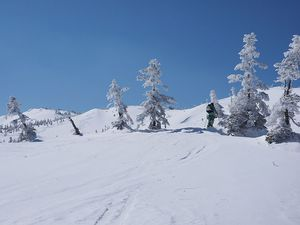 190303苗場スキー025.jpg