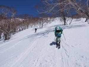 190413平標山バックカントリースキー031.jpg
