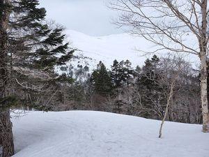190421至仏山BCスキー017.jpg