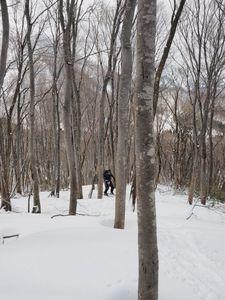 190428巻機山BCスキー026.jpg