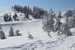 200111苗場スキー029.jpg