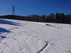 201205かぐらスキー006.jpg